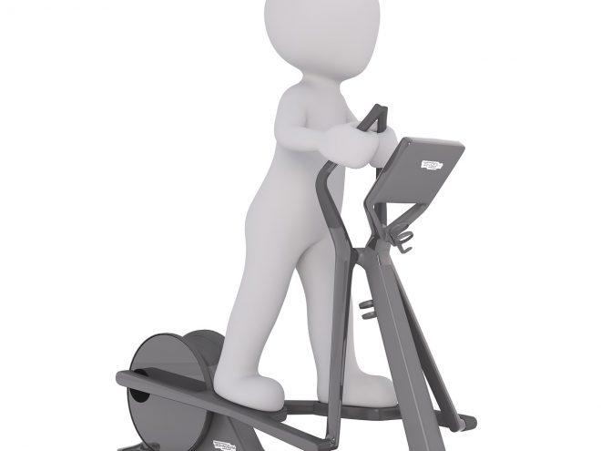 Fitnessbücher